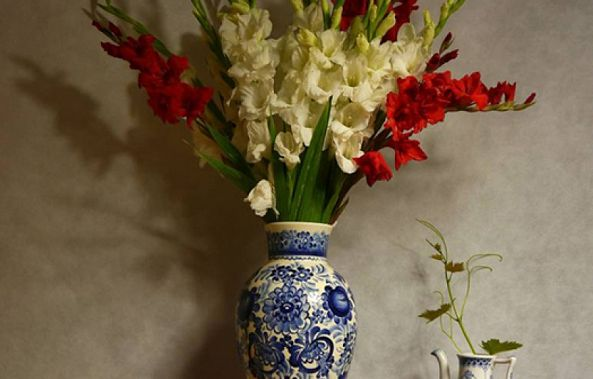 Still Life with Gladiolas-Claudia Stanetti