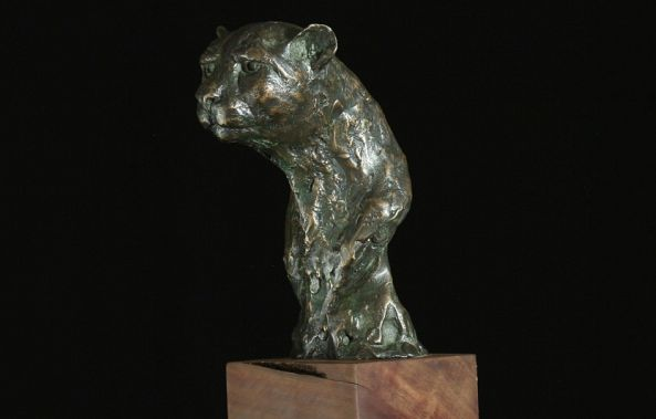Cheetah Bust-Willem Botha