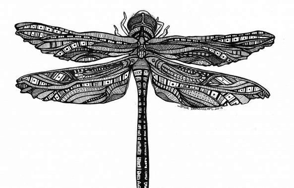 Dragonfly-Jessie Beauvilliers