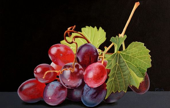Red Grapes-Dietrich Moravec