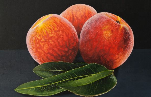 Peaches and Leaves-Dietrich Moravec
